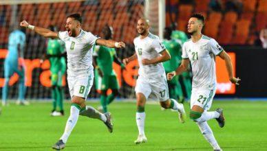 algeria campione